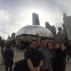 Chicago, Lab Team 2015