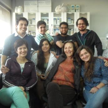 Full team, Mayo 2015